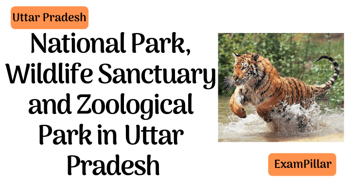 National Park, Wildlife Sanctuary and Zoological Park inUttar Pradesh