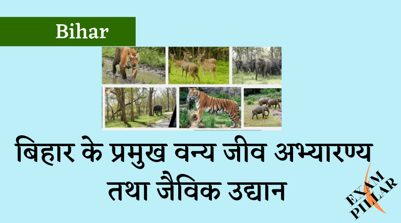 Wildlife Sanctuary and Biological Park in Bihar