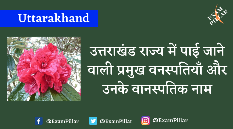 Flora found in the state of Uttarakhand and their botanical names
