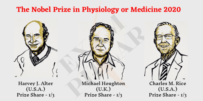 The Nobel Prize in Physiology or Medicine 2020